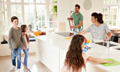 eco-friendly-house-cleaning-tips